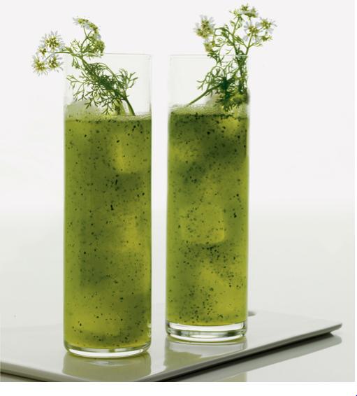 cilantro cooler